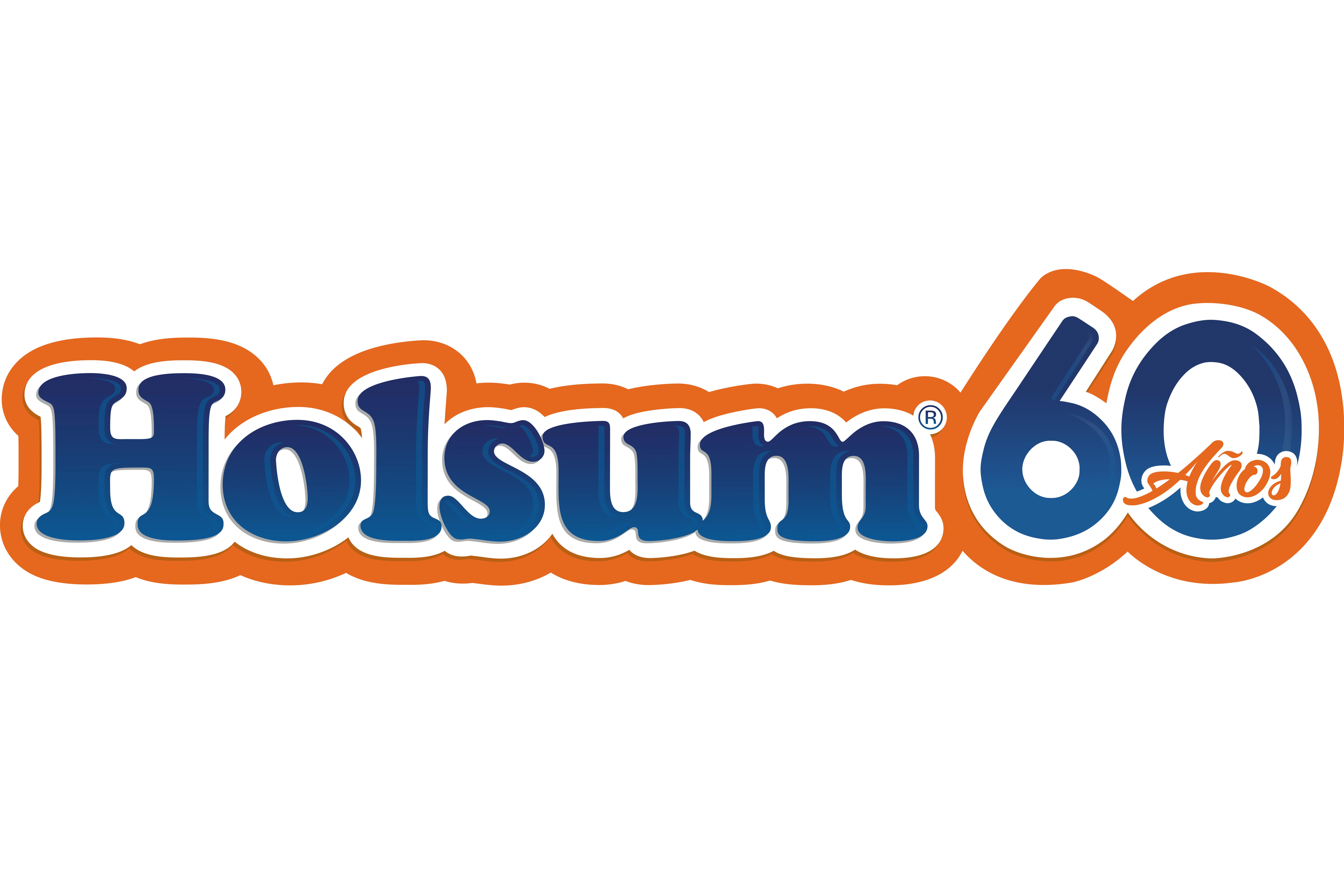 Logo Holsum